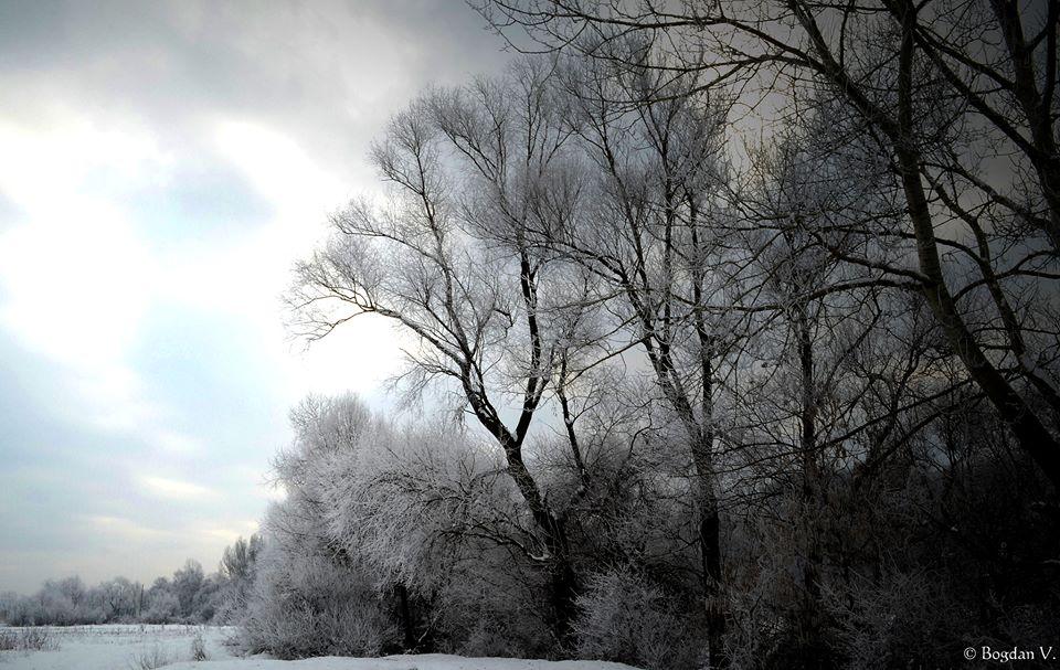ultima-ninsoare