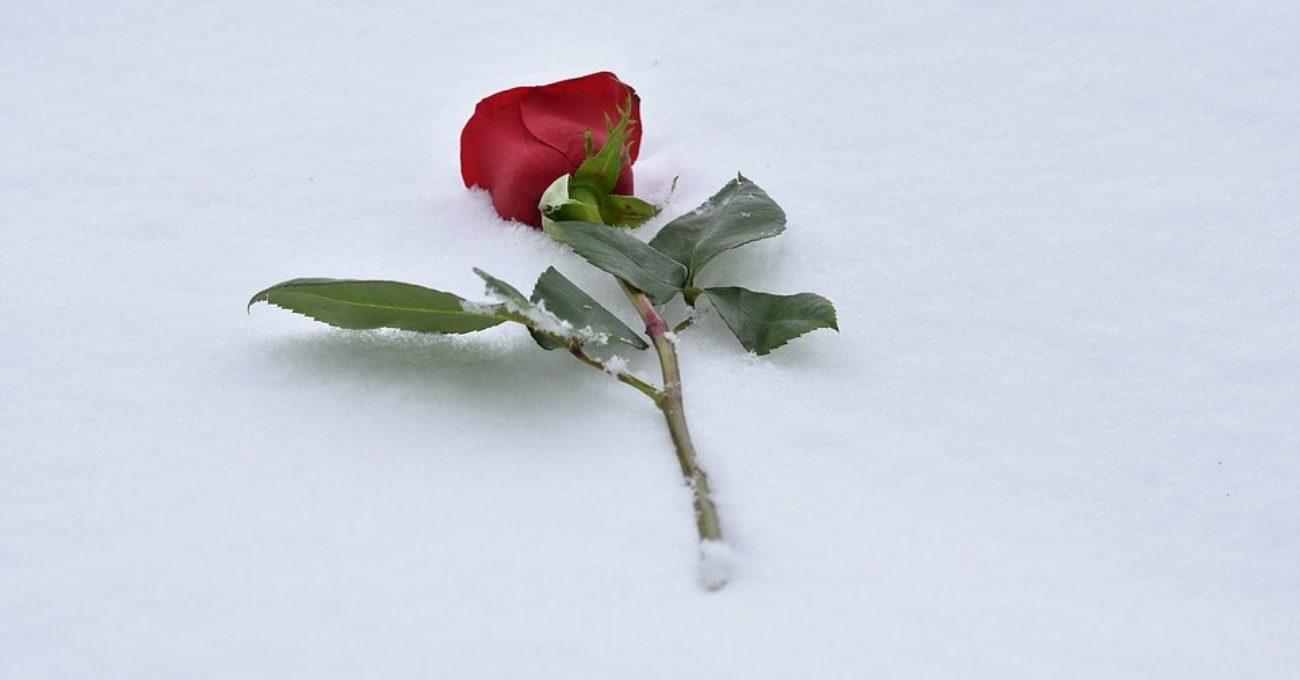 Iarna iubirii