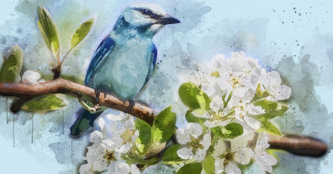 Taina primăverii