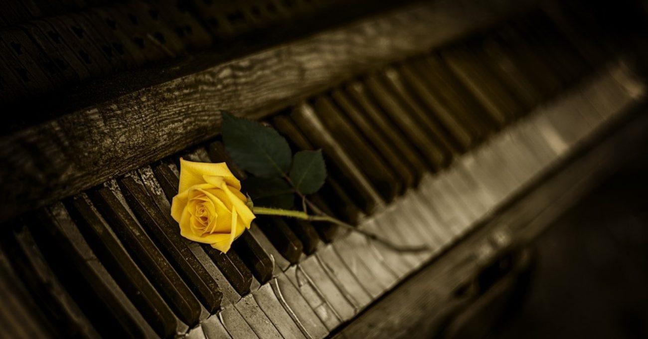 Pianistul, poezie