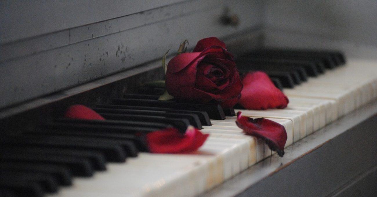 Sonetul amagirilor de Alexandra Mihalache