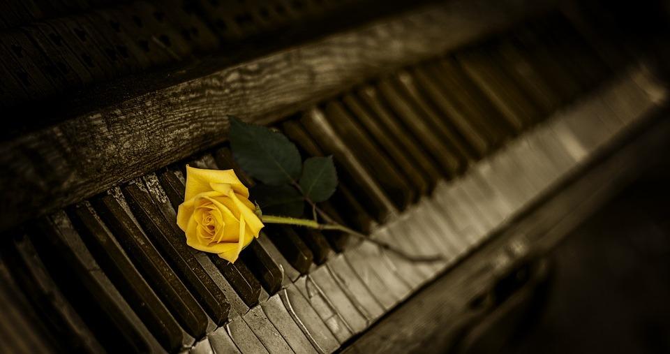 Cântec de dor - poezie de Alexandra Mihalache