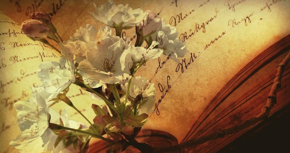 Cuvintele - poezie de Alexandra Mihalache