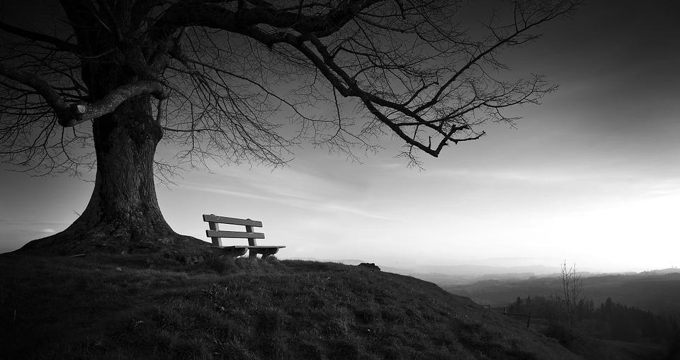 Rondelul singurătăţii - poezie de Alexandra Mihalache