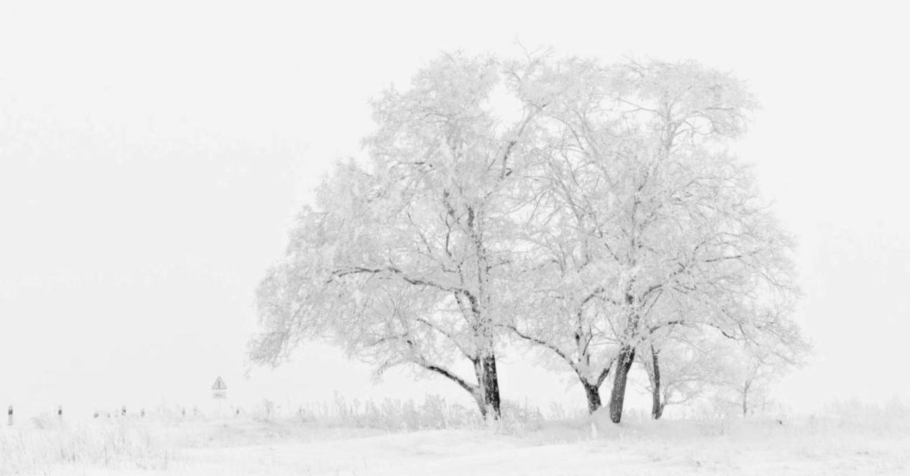 Inca o iarna - poezie de Alexandra Mihalache