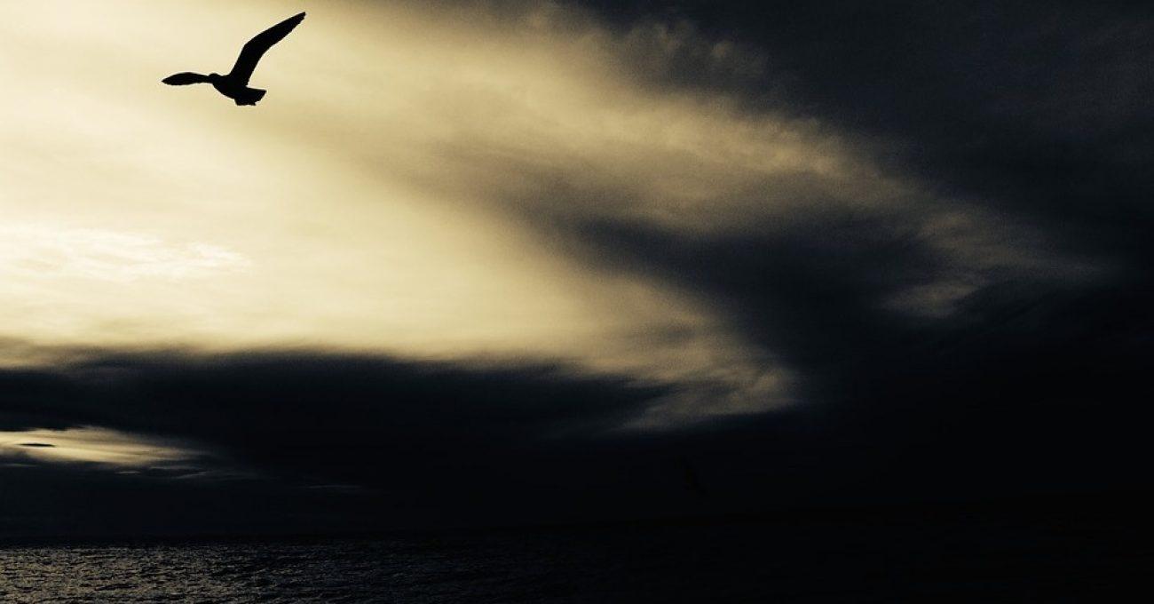 Avertizare meteo - poezie de Alexandra Mihalache
