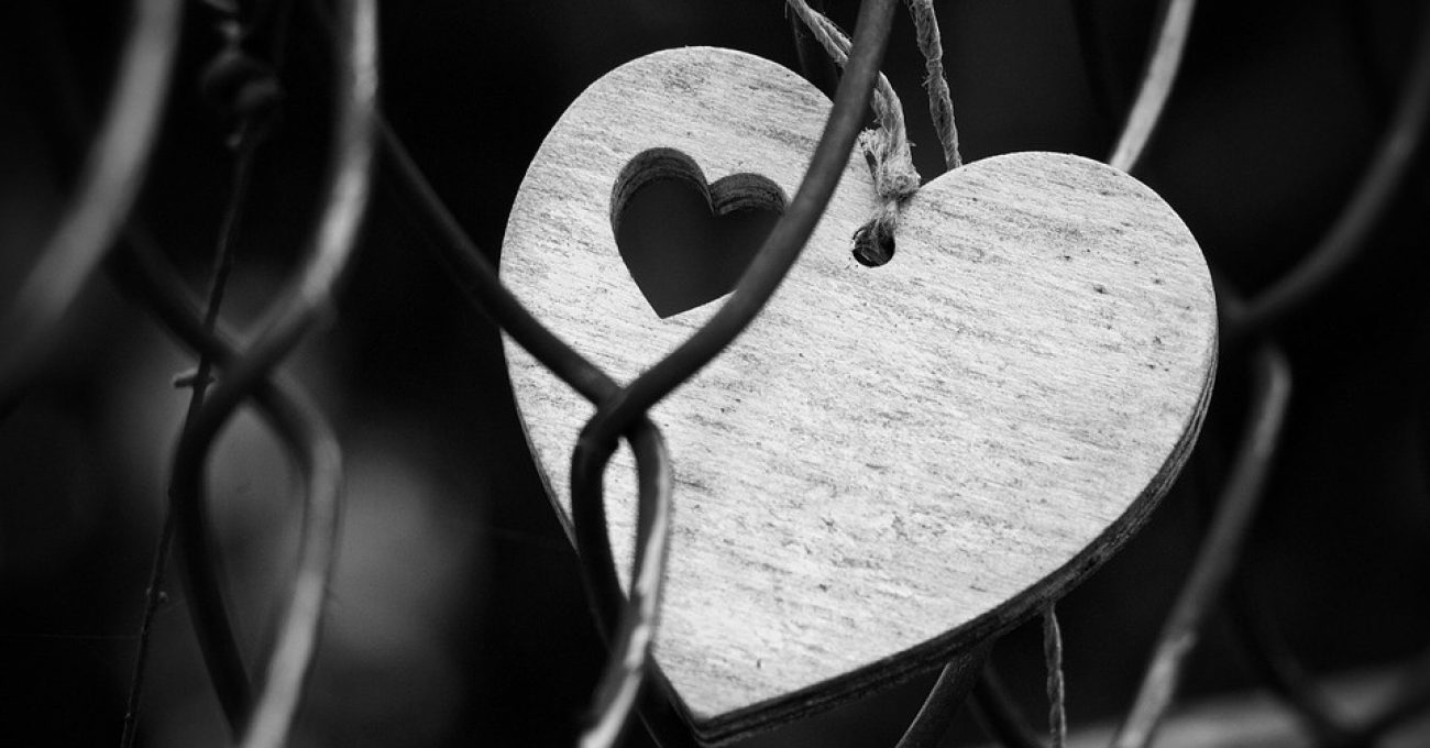 Inima si ratiune - poezie de Alexandra Mihalache