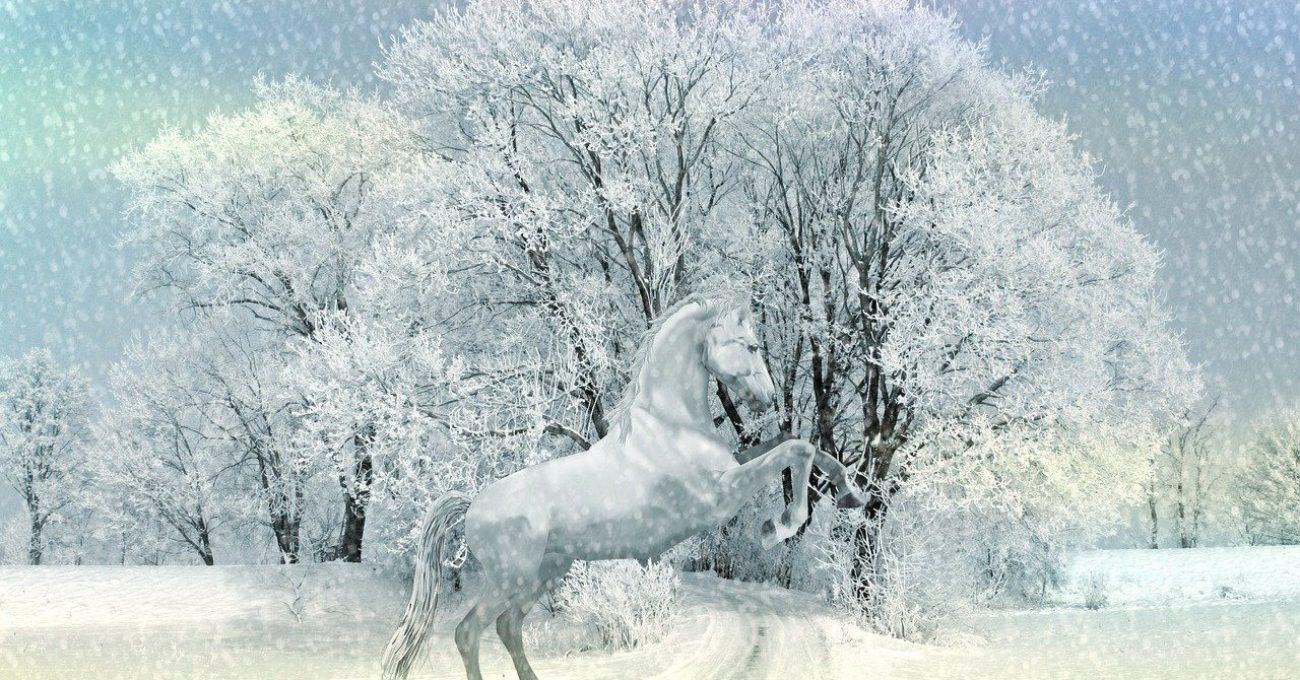 Sa vina iarna - poezie de Alexandra Mihalache